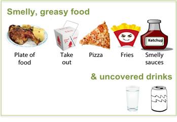 foodpolicy-bad2